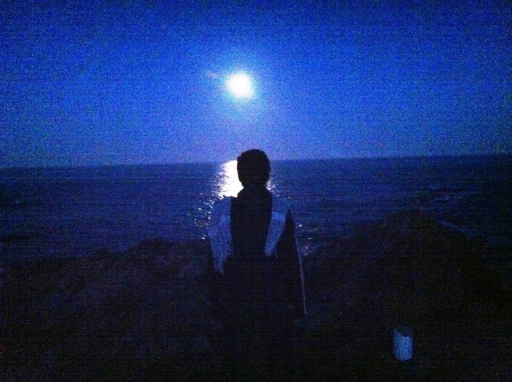 Mirant la lluna